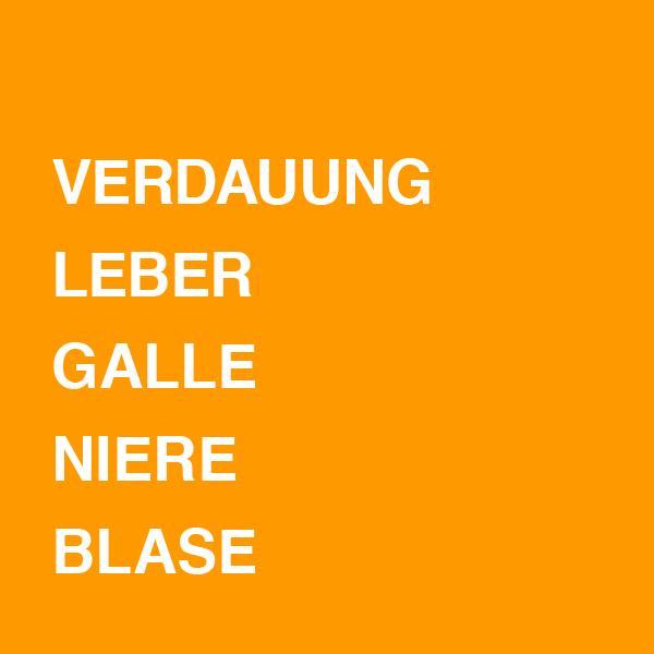 Verdauung / Leber / Galle / Niere / Blase